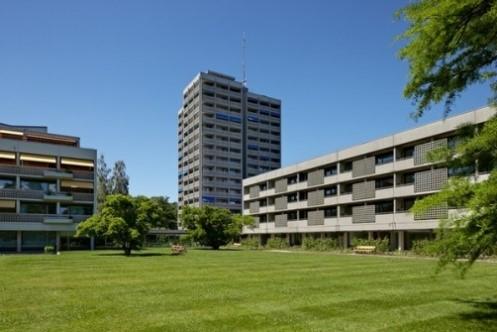 Sanierung Burgerheim